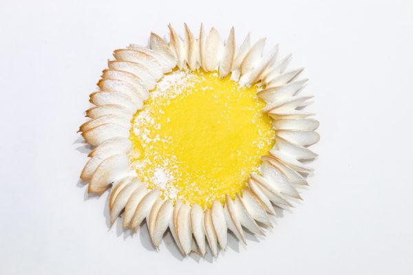 lemon meringue pie, yellow pie, sunflower pie, baby shower yellow pie, shower pie, gourmet pie, order pie online, buy fancy pie az