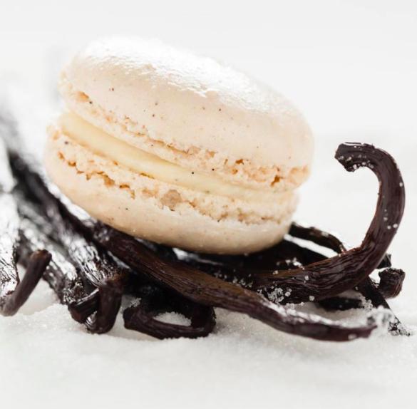 Vanilla Macaron - Gluten Free - Bakery in Scottsdale AZ - french Vanilla Macaroon